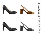 vector design of footwear and... | Shutterstock .eps vector #1179747814