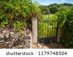 Old Rusted Garden Gate With...