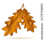autumn oak leaves illustration... | Shutterstock . vector #1179753091
