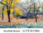 central park at rainy day  new... | Shutterstock . vector #1179767584