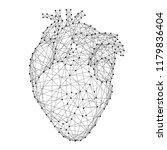 heart anatomical human organ... | Shutterstock .eps vector #1179836404