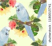 seamless texture bird... | Shutterstock .eps vector #1180015741