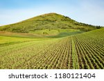 the palouse farm land in... | Shutterstock . vector #1180121404