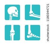 set of orthopedic and skeleton... | Shutterstock .eps vector #1180344721