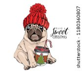 Stock vector adorable beige puppy pug in a red knitted hat and with a coffee have a sweet christmas lettering 1180360807