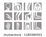 human bone and joint icon set | Shutterstock .eps vector #1180384501