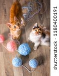 Stock photo  two kittens playing with ball of wool 1180400191