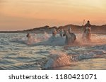 running horses on water  | Shutterstock . vector #1180421071