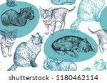 cute kittens seamless pattern.... | Shutterstock .eps vector #1180462114