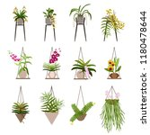 diverse flowers in pots ... | Shutterstock .eps vector #1180478644