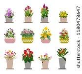 diverse flowers in pots ... | Shutterstock .eps vector #1180478647