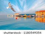 pasaport pier with seagull   ... | Shutterstock . vector #1180549354