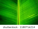 view the background patterns... | Shutterstock . vector #1180716214