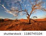 sand dunes in the salt pan of... | Shutterstock . vector #1180745104