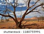 sand dunes in the salt pan of... | Shutterstock . vector #1180755991