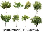 Tree Set Collection Isolated White - Fine Art prints