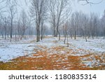 snowy path leading among the... | Shutterstock . vector #1180835314