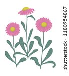 pink asters with green leaves...   Shutterstock .eps vector #1180954867