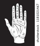 palmistry or chiromancy hand...   Shutterstock .eps vector #1181021467