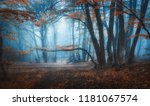 mystical dark autumn forest... | Shutterstock . vector #1181067574