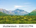 giant mountains above green... | Shutterstock . vector #1181111794