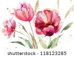Three Tulips Flowers ...
