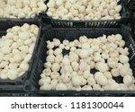 raw champignon mushrooms in...   Shutterstock . vector #1181300044
