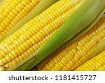 yellow corn background   Shutterstock . vector #1181415727