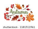 autumn lettering handwritten... | Shutterstock .eps vector #1181511961