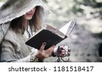 fairy magician. a sorcerer with ... | Shutterstock . vector #1181518417