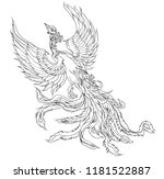 phoenix fire bird outline and... | Shutterstock .eps vector #1181522887