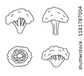 broccoli plant icon set.... | Shutterstock .eps vector #1181787004