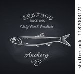 hand drawn anchovy fish on... | Shutterstock .eps vector #1182003121