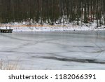 Frozen Pond In Coopers Rock...