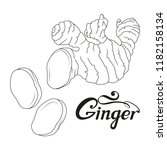 hand drawn ginger root  spicy... | Shutterstock .eps vector #1182158134