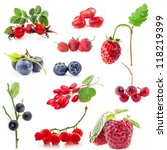 collections of berry isolated... | Shutterstock . vector #118219399