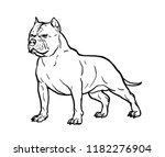 hand drawn sketch of american...   Shutterstock .eps vector #1182276904