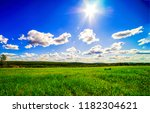 summer green meadow in sunny... | Shutterstock . vector #1182304621