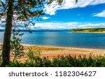 forest river beach landscape....   Shutterstock . vector #1182304627