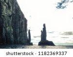 dolerite column at cape raoul...   Shutterstock . vector #1182369337