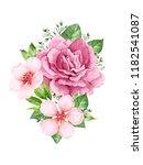 bouquet of rose  apple tree... | Shutterstock .eps vector #1182541087