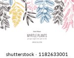 botanical background with... | Shutterstock .eps vector #1182633001