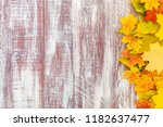 yellow wet autumn leaves on the ... | Shutterstock . vector #1182637477