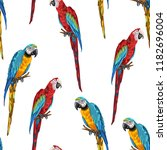 tropical seamless pattern with... | Shutterstock .eps vector #1182696004