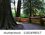 gravel path leading along these ... | Shutterstock . vector #1182698017