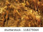 mountain autumn landscape | Shutterstock . vector #118275064