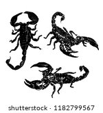 south arthropods scorpions | Shutterstock .eps vector #1182799567