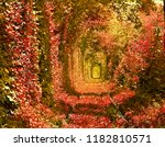 railroad in autumnal forest... | Shutterstock . vector #1182810571