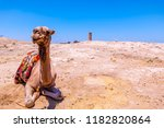 with camel view on foreground... | Shutterstock . vector #1182820864