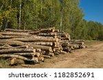 the felled trees folded near... | Shutterstock . vector #1182852691